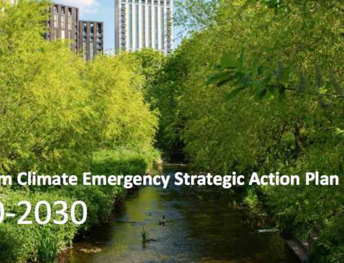 Lewisham Climate Emergency Action Plan