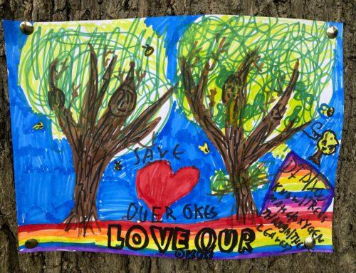 Save The Moremead Oaks!